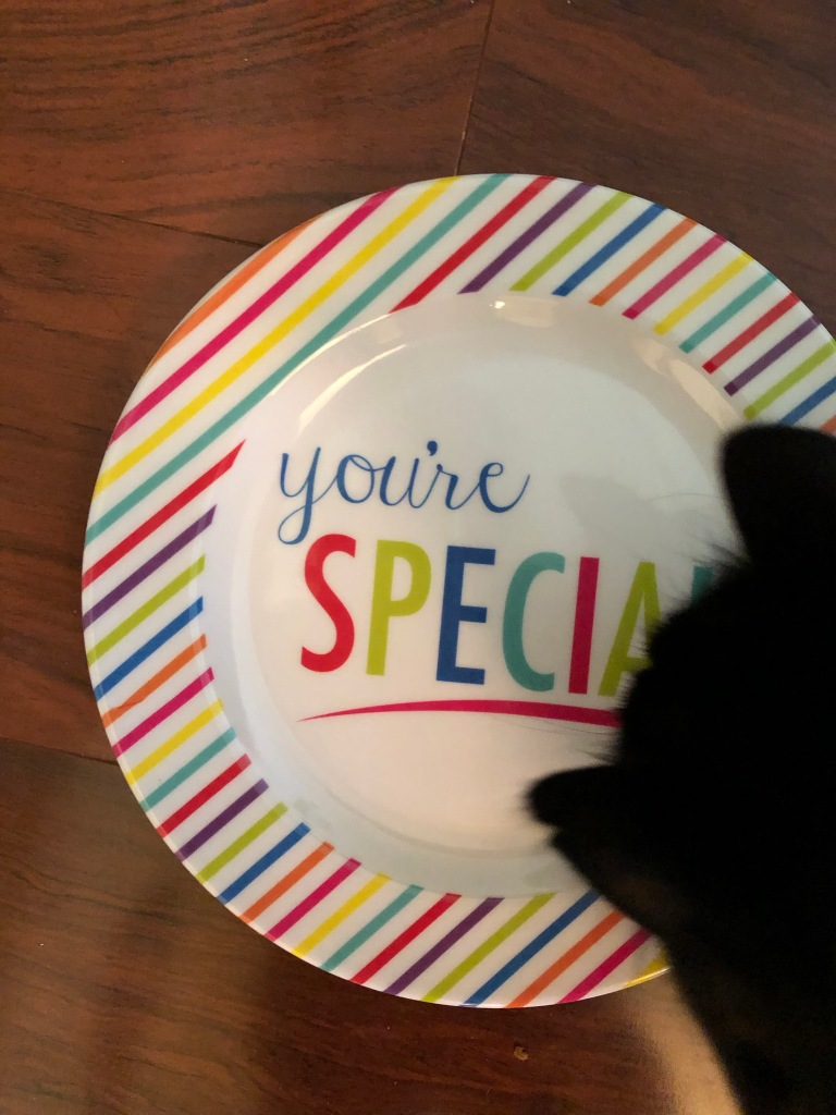 """Natasha at dinner. Stay tuned for my humorous essay, """"20 Reasons I Married My Cat."""""""